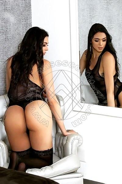 Priscila Colucci PISA 3288278364